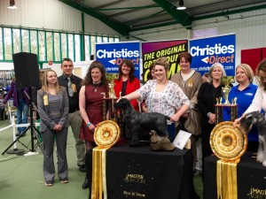 Master groom Best in Show